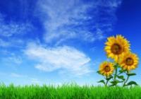 sostenibilita-ambientale